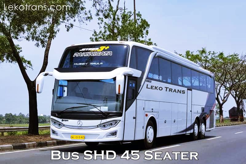Bus SHD 45 Seater Charter and rental Bali