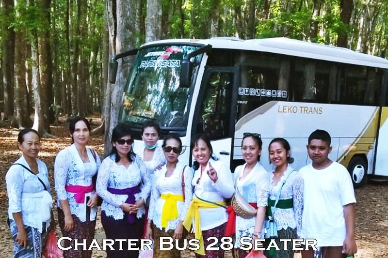 Charter Bus 25 - 28 Seater Bali